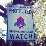 Neighborhood watch spider-man