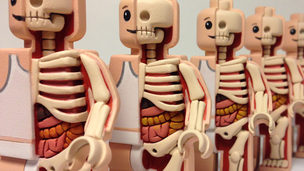 Artist Dissects Toys to Reveal Their Skeletons and Guts