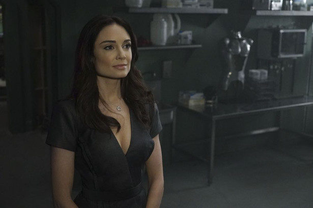 Agents of SHIELD 2