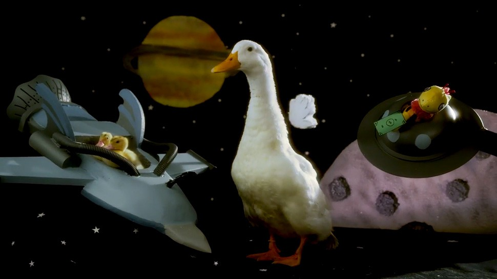 DUCKTALES Opening Might Just Be Better With Real Ducks