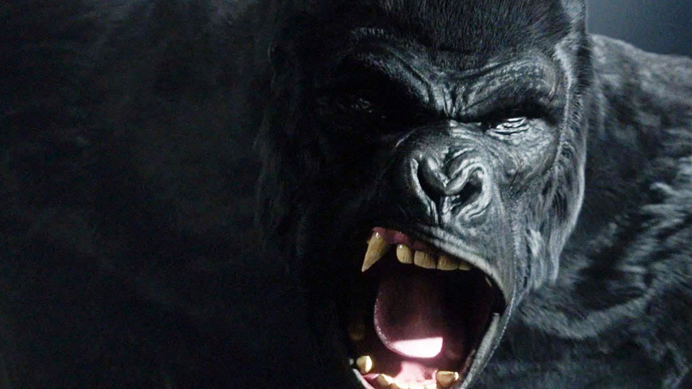 "THE FLASH Review: ""Grodd Lives"""