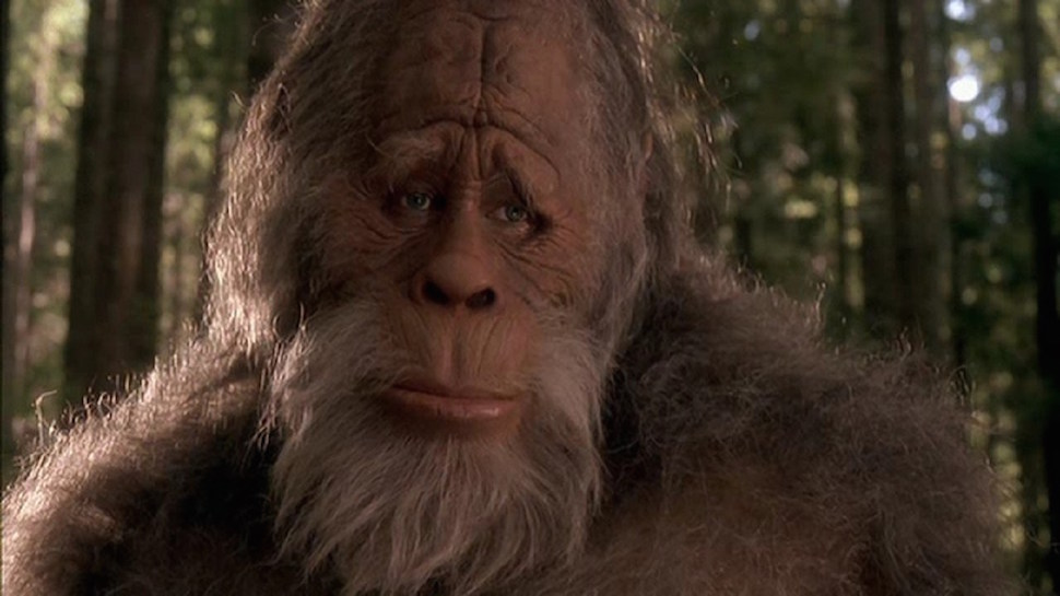 State of California Sued Because It Won't Recognize Bigfoot