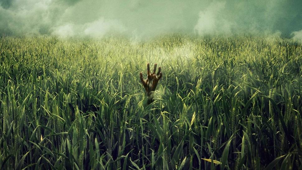 """Résultat de recherche d'images pour """"In the Tall Grass"""" de Stephen King"""""""