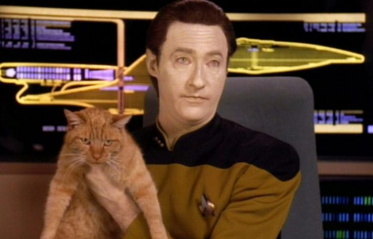 Who STAR TREK's Data Was, and Where He Is Now_8