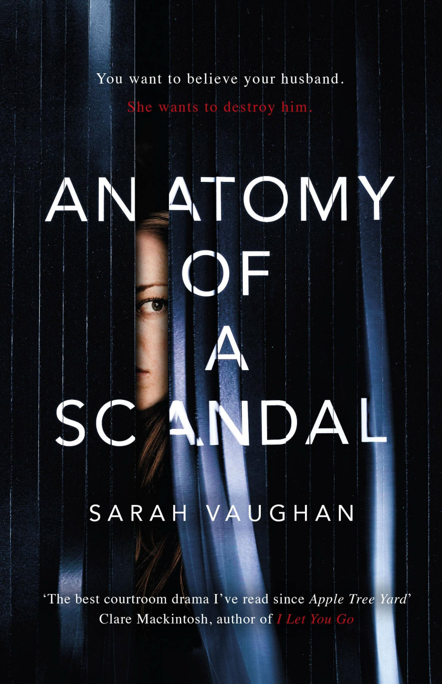 anatomy of a scandal cover