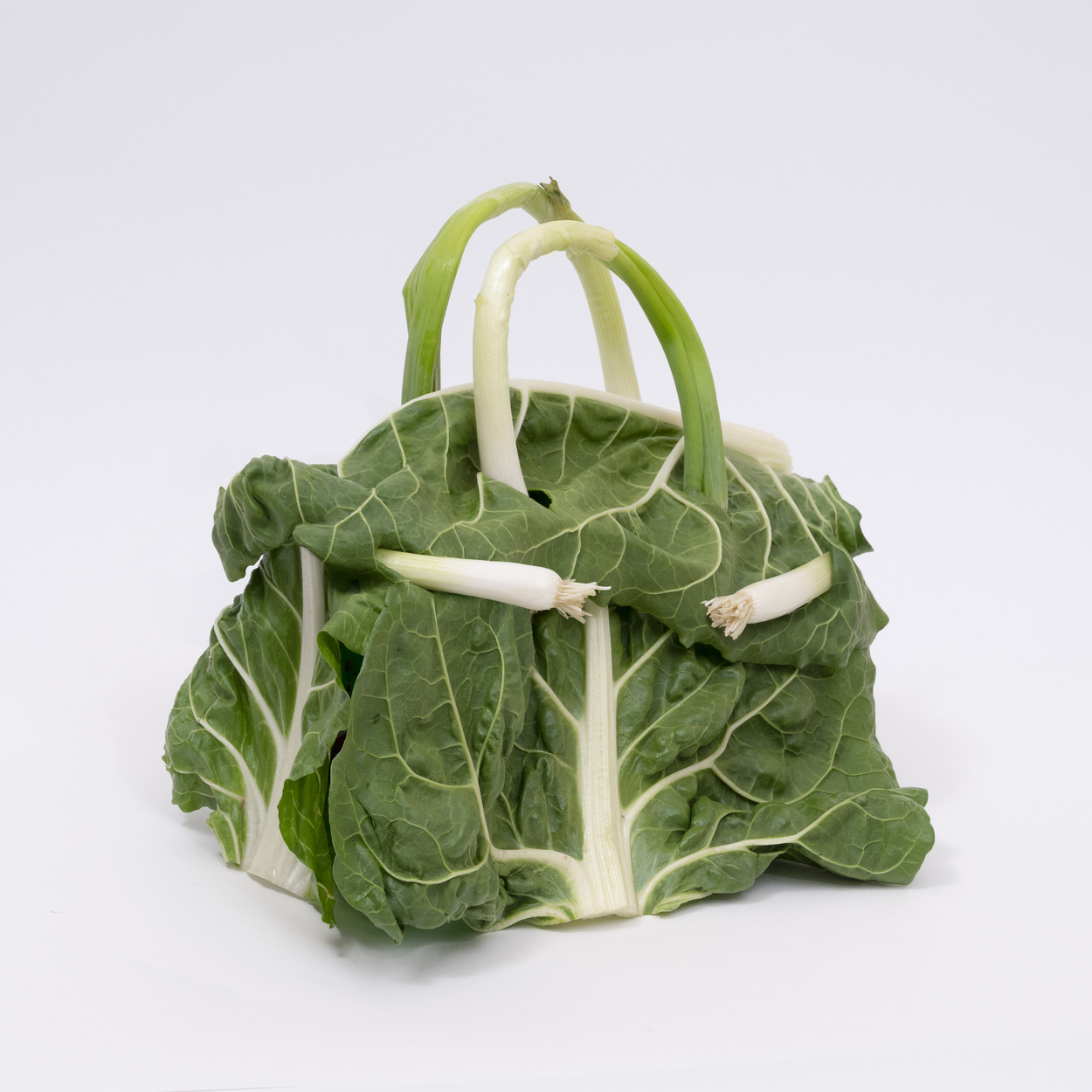 a photo of a birkin bag made from cabbage against a white background