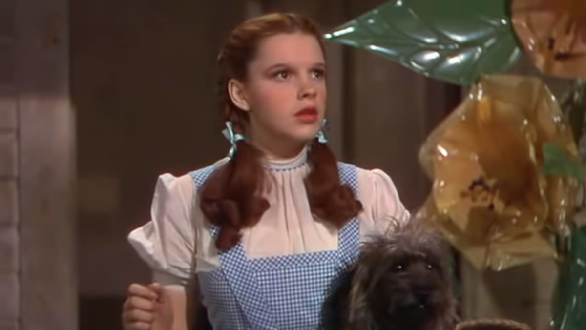 dorothy from wizard of oz steps into the land of oz with her dog toto in her arms