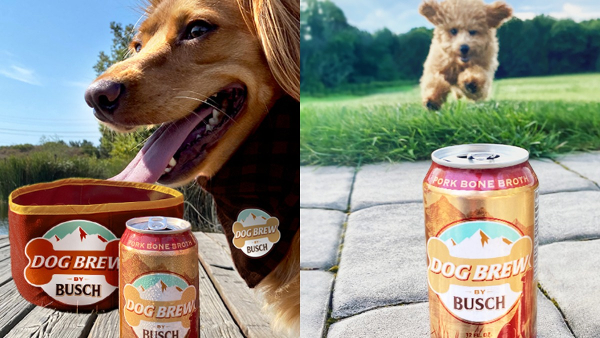 Busch's dog beer, Dog Brew, with two happy dogs